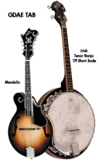 mandolin and tenor banjo